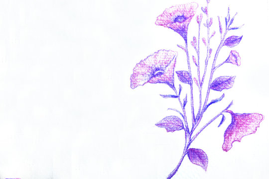 abstract, art, background, beautiful, beauty, bloom, blooming, blossom, blue, botanical, botany, bouquet, branch, card, color, color pencil, creative, decor, decoration, design, drawing, drawing flowe