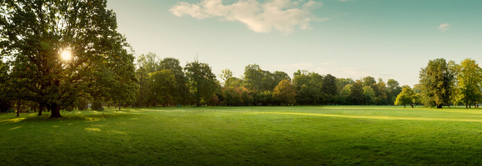 Tuinposter Landschappen Panorama of autumn city park at sunrise