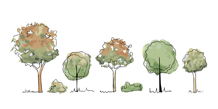 Set of autumn Trees, Bushes, Tree watercolor sketches for landscape design. Vector illustration, hand drawn, isolated on white background.