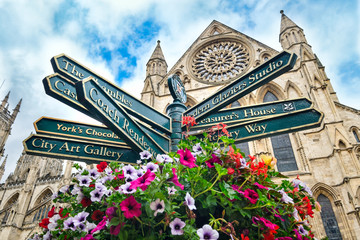 The York Minster and a sign with directions to landmarks in the city Wall mural