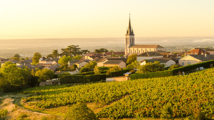 Fototapeten Honig Beaujolais village at morning
