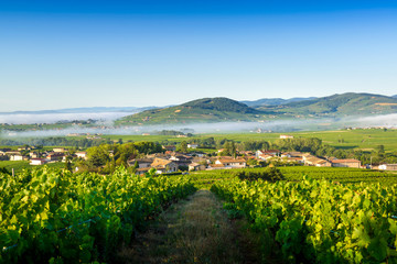 Brouilly hill, Cercie and Morgon village, Beaujolais, France