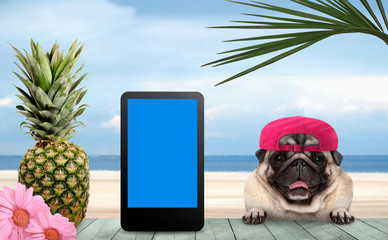 smiling tropical summer pug dog with cap and tablet, with paws on vintage green wooden table and sea and beach on background