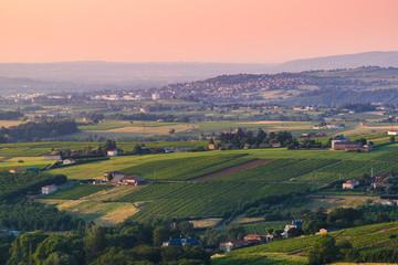 Landscape of vineyards and Limas city, Beaujolais, France