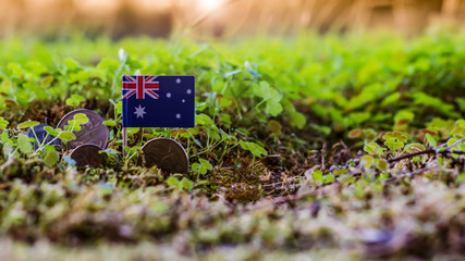flag of Australia and dollar coins in variegated moss and plant environment