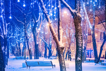 Russia. Winter St. Petersburg. Christmas illumination in a night park. Park benches. Winter park. Christmas cannulas in Saint Petersburg. Travels to Petersburg. Vacation in Russia. Garlands on trees