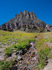 Beautiful landscape around Logan Pass