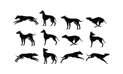 hound dog logo