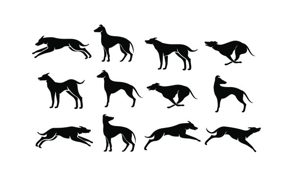 set hound dog logo icon design