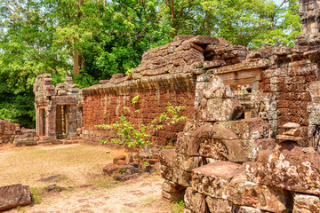 Fototapete - Amazing view of scenic ruins of Ta Prohm temple, Angkor