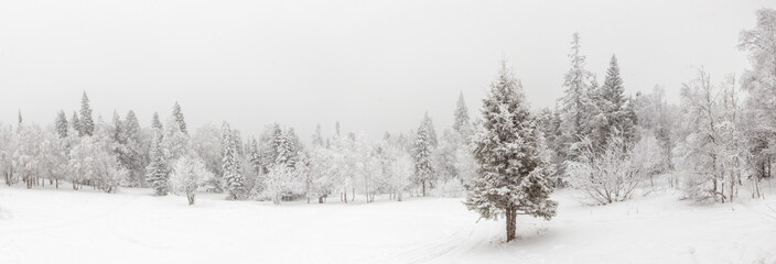 Tuinposter Wit Winter landscape. Taganay national Park, Chelyabinsk region, South Ural, Russia