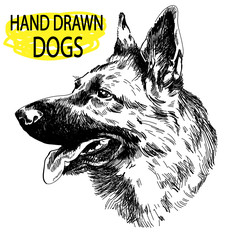 German Shepherd. A set of images. Drawing by hand in vintage style. An adult dog, puppy. Dog breeds.