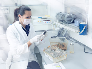 Female scientist performs animal testing in modern laboratory, academic research or industrial facility