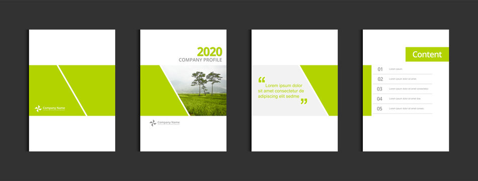 Business cover design template vector. Template A4 for annual report catalog magazine flyer booklet brochure. Sample image with Gradient Mesh.