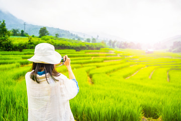 tourist take picture rice field terrace at Chiang Mai