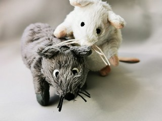 Two cute funny mouse, a symbol of the year 2020 on the astrological calendar. Photo of children's toys