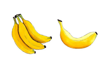 Banana set on a white background. Hand draw illustration