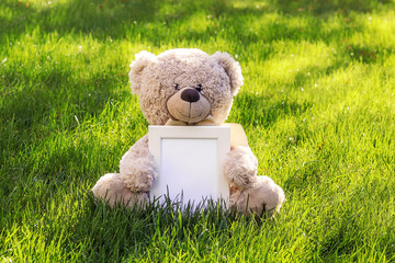 Mockup. Soft beige teddy bear toy holding white clean mock up frame with copy space sitting on green grass outdoors at sunny autumn morning. Empty space. Baby children concept.