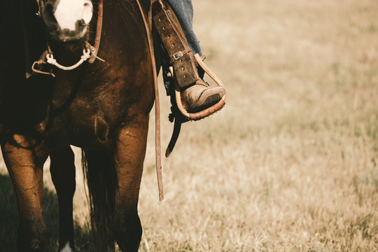 Western lifestyle shows boot in stirrup close up on horse during horseback riding, copy space on field background.