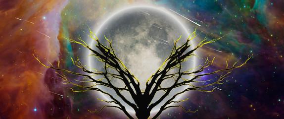 Mystic tree in moonlight. Vivid universe