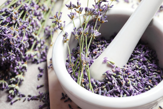 Mortar and pestle with lavender flowers on grey stone background, closeup. Natural cosmetic