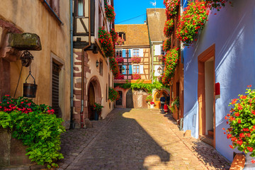 Narrow street and beautiful historic houses in old part of Riquewihr village, wine route in Alsace region, France Fotomurales