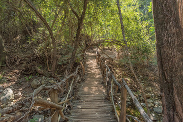Wooden pedestrian bridge on waterfall trail, Blyde River Canyon