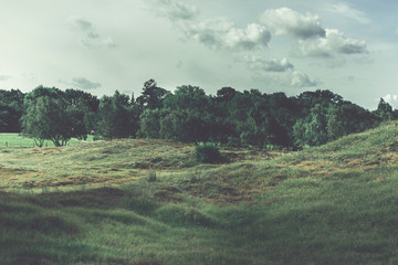 Fotorollo Khaki Landscape in Germany