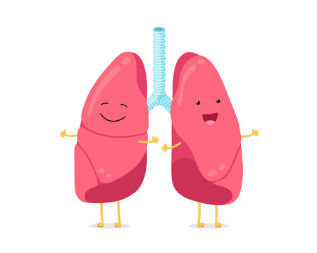 Cute cartoon funny lungs character. Strong smiling lung. Human respiratory system happy internal organ mascot. Healthy anatomy flat vector illusrtation