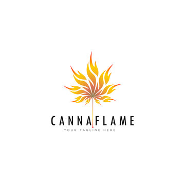 creative logo cannaflame, cannabis leaf with flame style vector