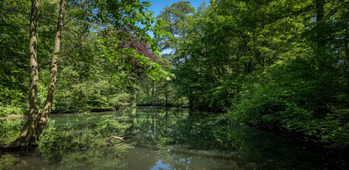 Teich mit Bäumen im Schlosspark Berlin-Buch