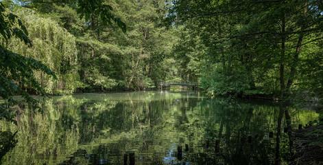 Teichlandschaft mit Brücke im Schlosspark Berlin-Buch
