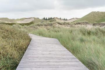 Bohlenweg in den Dünen von Amrum