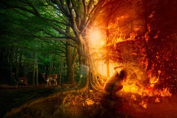 Obraz Forest fires. Destruction of nature - fototapety do salonu