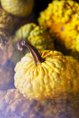 Close-up of yellow gourds photographed through a prism