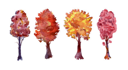 Set of four autumn trees. Beautiful watercolor plants on an isolated white background. Autumn. Warm colors. Yellow, red, orange foliage. Crowns of trees with branches and leaves. Burgundy, pink, red,