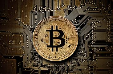 Bitcoin golden coin on computer circuit board