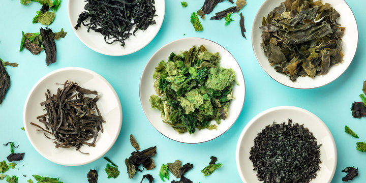 A panorama of various dry seaweed, sea vegetables, shot from the top on a teal blue background