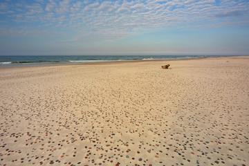 Piaszczysta plaża w Słowińskim Parku Narodowym,Polska.