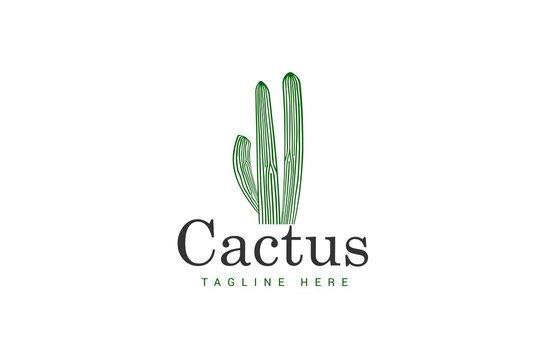 cactus logo template with a green cactus