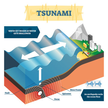 Tsunami vector illustration. Labeled educational big ocean wave explanation