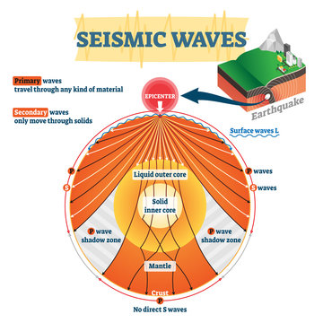 Seismic waves vector illustration. Labeled educational earthquake frequency