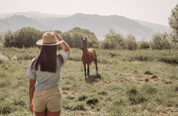 Rear view of a young woman looking to a horse on meadow