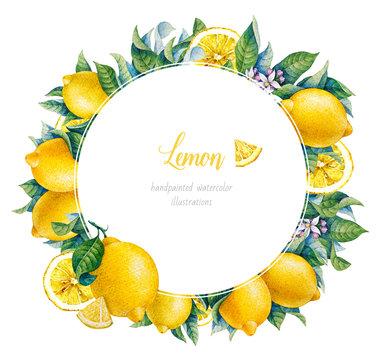 Botanical lemon. Watercolor. Citrus fruit