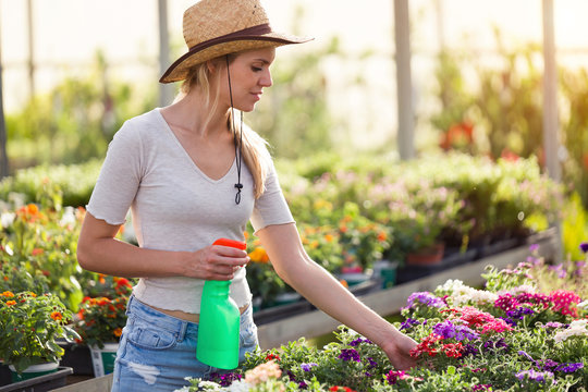 Beautiful young woman taking care of flowers in the greenhouse