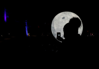A woman takes a picture of an installation at the Enchanted Forest 2019 event Cosmos, an annual sound and light show, at Faskally Wood, Pitlochry, Scotland