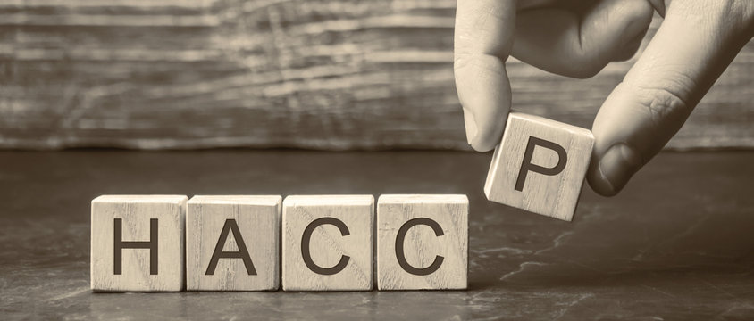 A man puts wooden blocks with the word HACCP. Hazard analysis and critical control points. Quality management rules for food industry. Food safety from biological, chemical, and physical hazards