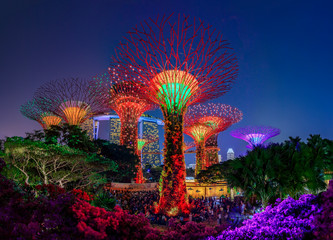 Garden Rhapsody, colorful light show at the Supertree Grove Gardens by the Bay in Singapore, popular tourist attraction