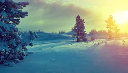 Foto auf Leinwand Gelb Schwefelsäure Beautiful Christmas landscape