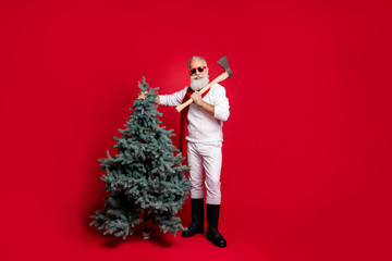 Full size photo of cool lumberjack with eyewear eyeglasses holding fir tree wearing white pullover...